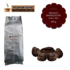 Caffè Arabica in grani Messico Maragogype - 500 gr