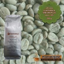 Caffè Verde Arabica in grani Guatemala SHB Oroplus - 250 gr